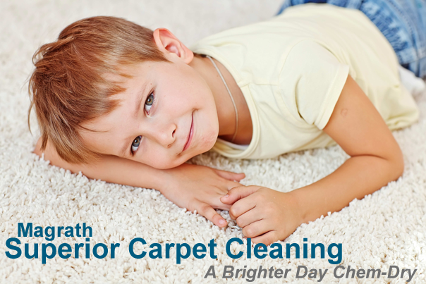 carpet cleaning magrath ab