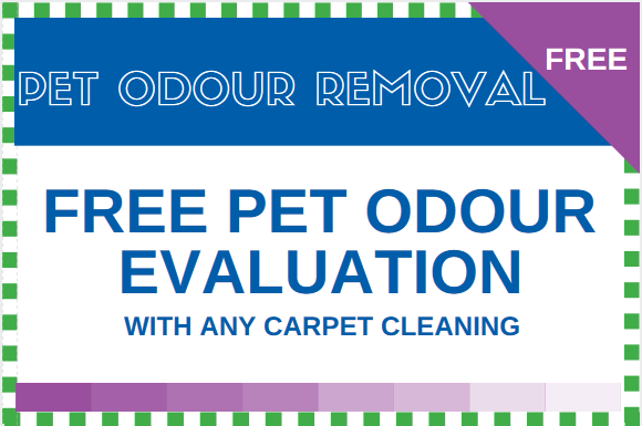 Pet_Odour_Removal_Coupon